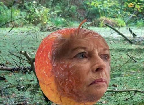 bad-apple-murkowski